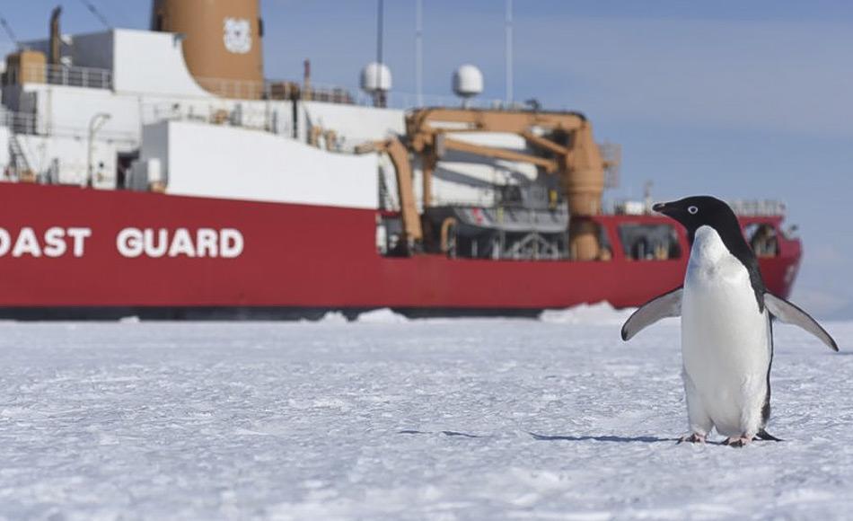 Ein Adelie-Pinguin begrüßt den U.S. amerikanischen Eisbrecher Polar Star im McMurdo-Sound. Das Schiff wurde 1976 in Dienst gestellt und ist eines der größten Schiffe in der Flotte der U.S. Küstenwache. Die Polar Star bricht jedes Jahr einen Kanal in das Meereis im McMurdo Sound, so dass die McMurdo Station und die wissenschaftlichen Programme auf dem Eis versorgt werden können. (Bild: US Coast Guard)
