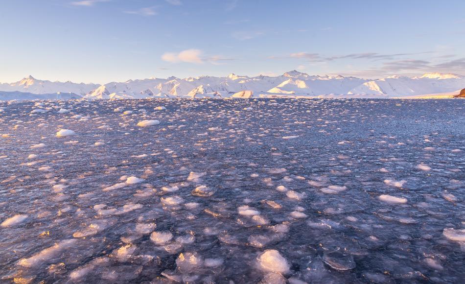 Am Ende des Sommers, wenn die Temperaturen in der Antarktis sinken, beginnt das Meer zuzufrieren, als erstes bildet sich sogenanntes Pfannkuchen-Eis. Nachdem im März ein neuer Tiefstwert erreicht wurde, steigt die antarktisch Meereisbedeckung mit dem herannahenden Winter nun langsam an, sie liegt jedoch weit unter dem Durchschnitt bisheriger Jahre. (Bild: Katja Riedel).
