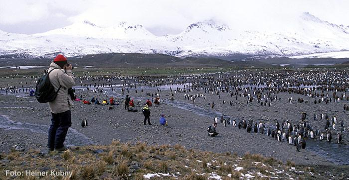 Touristen-in-der-Antarktis
