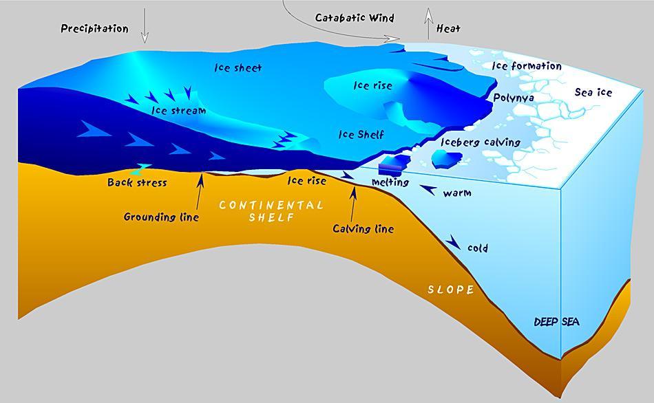 Skizze der antarktischen Küste mit glaziologischen und ozeanographischen Prozesse. Warmes Wasser kann unter dem Schelfeis eindringen und es von unten abschmelzen. Unterkühltes Wasser von tief unter dem Schelfeis Plättchen-Eis, wenn der Druck mit abnehmender Tiefe zunimmt. Es setzt sich dann an der Unterseite des Meereises ab. Grafik von Hannes Grobe, AWI Bremerhaven