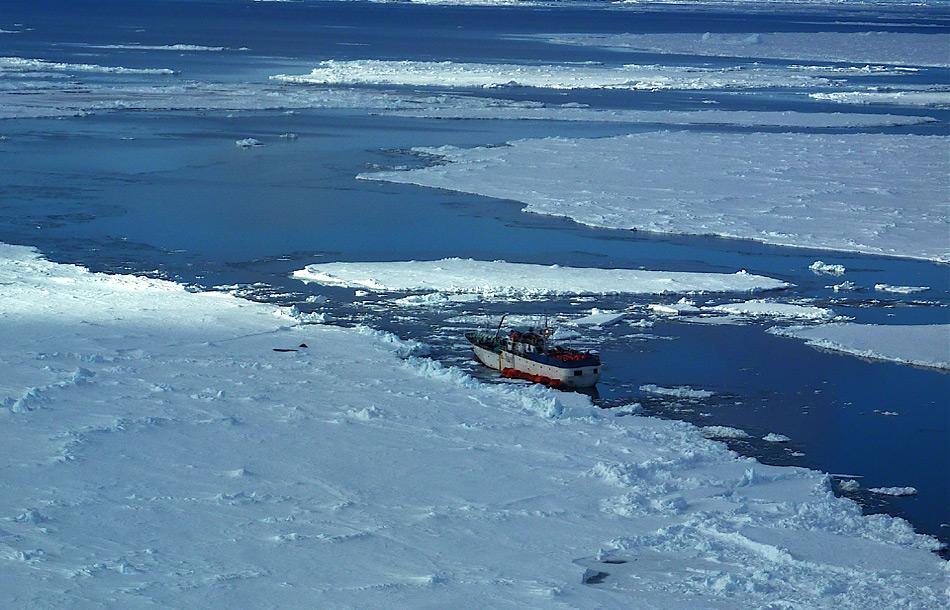 Mit teilweise abenteuerlichen Schiffen werden in der Antarktis die Leinen zum Fischfang ausgelegt.