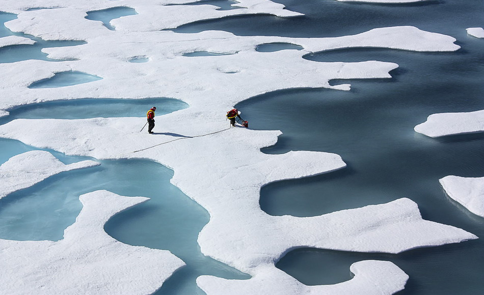 Algen wachsen unter dem Meereis in der Arktis. Bisher wurde angenommen, dass sie erst im Frühjahr aktiv werden, wenn das Eis schmilzt und Licht in die Tiefe vordringt. (Bild: NASA Goddard Space Flight Center aus Greenbelt, MD, USA, hochgeladen von PDTillman)