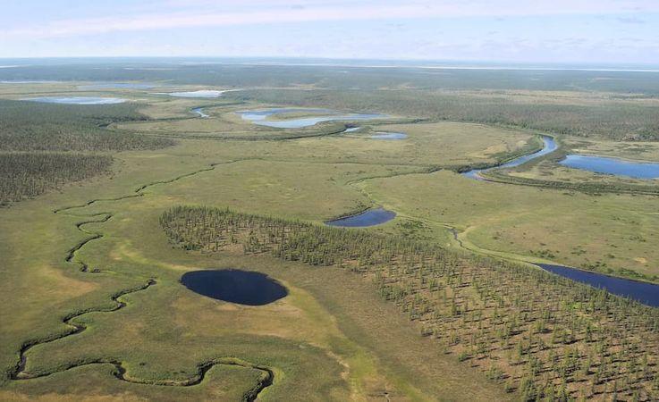 Die sibirische Taiga, die weite Teile des hohen Nordens Russlands ausmacht, ist von