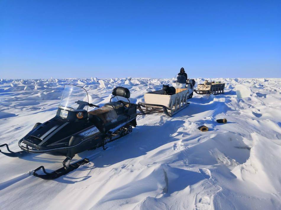 Freiwillige des WWF Russland haben auf einer Schneemobil-Expedition Eisbärenhöhlen gezählt. (Bild: WWF Russland)