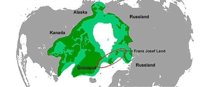 Eisbaerenpopulation-Spitzbergen