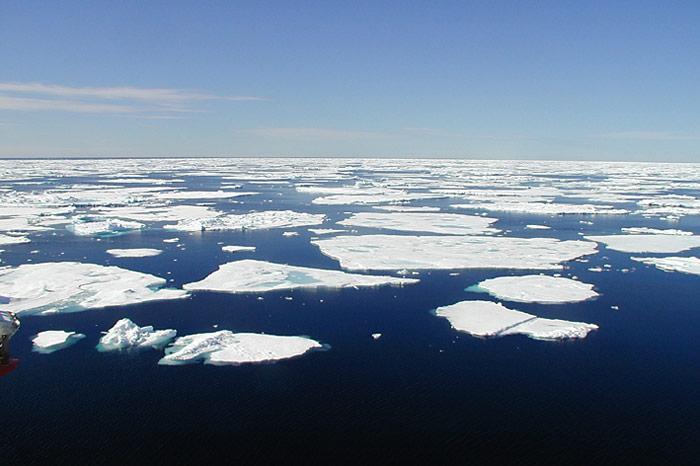 Eisschollen-in-der-Arktis