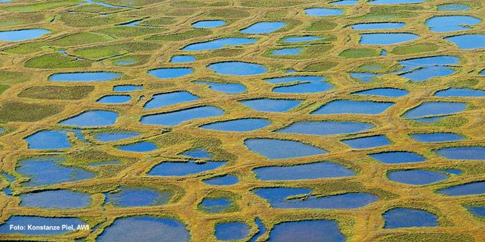 Permafrostboden-Lenadelta