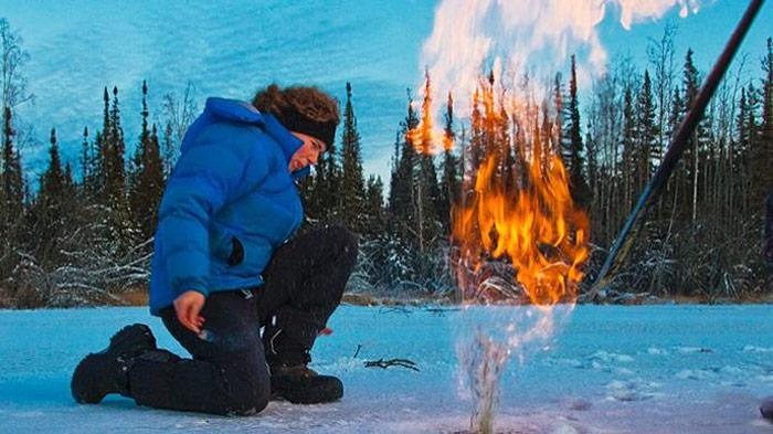 Tundra Feuer