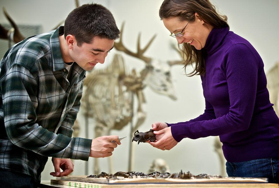 Thomas Cullen und Dr. Natalia Rybczynski bei der Durchsicht von Fossilien. Foto: Canadian Museum of Nature