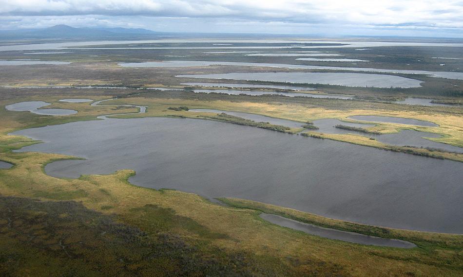 Eine Luftaufnahme mehrerer Thermokarst-Seen in der sibirischen Kolyma-Region. Die flachen Permafrost-Regionen im Hohen Norden sind heutzutage übersäht mit Hunderttausenden Thermokarst-Seen und -becken. Sie entstanden vor allem in der Übergangszeit vom Pleistozän ins Holozän und dem anschliessenden Holozän-Wärmemaximum in vielen Teilen der Arktis. Foto: Guido Grosse, AWI