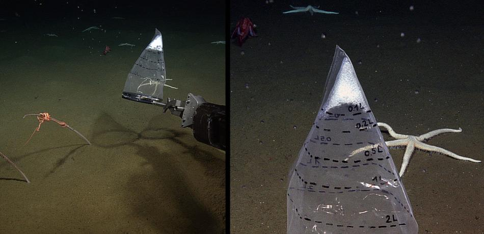 Es ist nicht ganz einfach, Gasblasen unter Wasser zu sammeln. Mit der Hilfe eines ferngesteuerten Fahrzeugs und einfachen Plastiksäcken können die Blasen von den Forschern gesammelt werden.