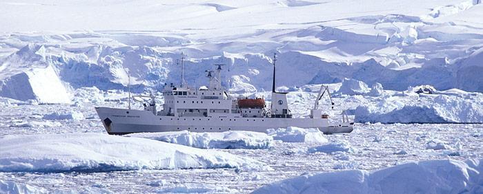 Molchanov in der Antarktis