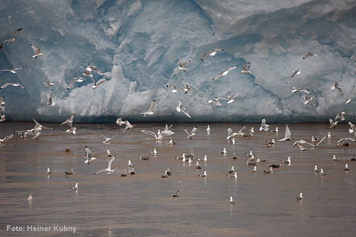 Spitzbergen-024
